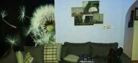صور الشاليه 3