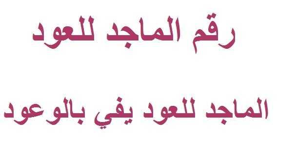8e7ba36a0 رقم الماجد للعود في السعودية - عروض اليوم