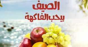 عروض بنده 14-8-2017