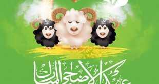 عروض سوق بلانيت في الامارات